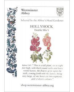 Westminster Abbey Hollyhock Seeds